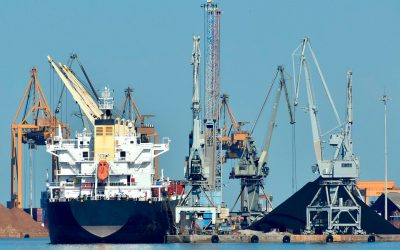The future of the Marine Sector